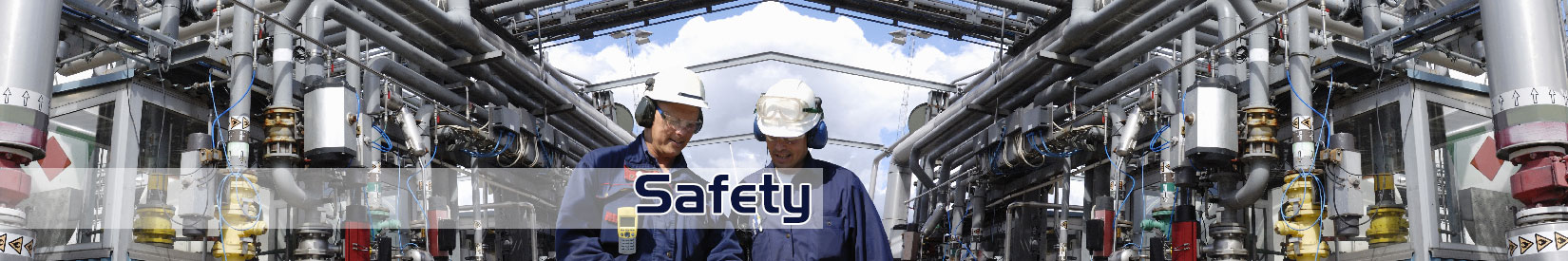 Safety Audits and Consulting